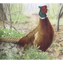 Мишень JVD - фазан