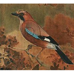 мишень птица армированная